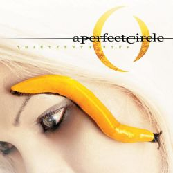 Albumart Blue from A Perfect Circle.